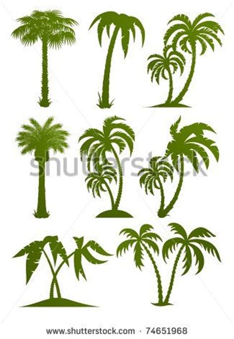 Essay About Coconut Tree In Kannada